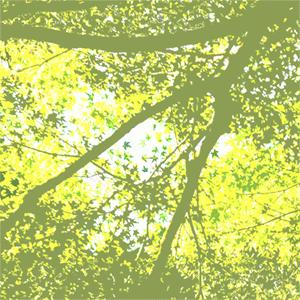 緑陰の俳句と季語