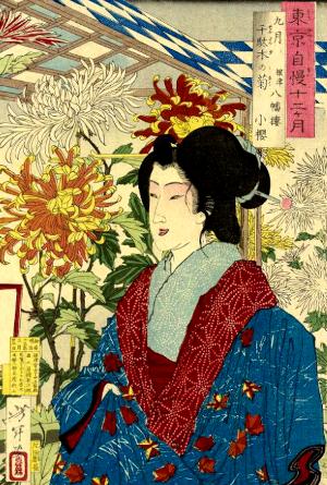 菊の俳句と季語(東京自慢十二ヶ月)