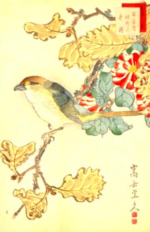 季語(生写四十八鷹百舌鳥枯かしは冬椿)