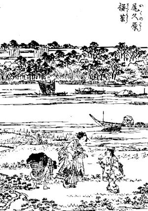 季語と俳句で桜草(江戸名所花暦)4