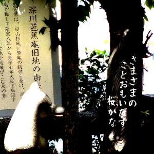 俳句「さまざまのこと思い出す桜かな」