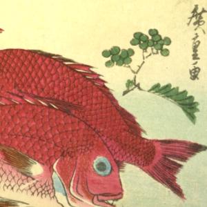 寿司ネタ俳句と季語(広重魚ずくし)